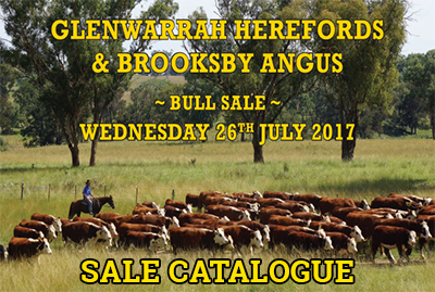 Glenwarrah Herefords and Brooksby Angus Sale Catalogue