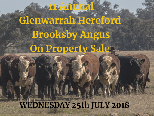 11th Annual Glenwarrah Hereford and Brooksby Angus Sale