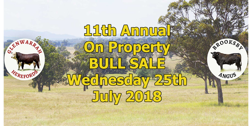 Glenwarrah Hereford and Brooksby Angus Sale catalogue