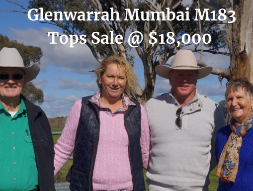 Glenwarrah Herefords & Brooksby Angus 2018 Sale Results