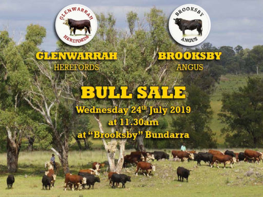 12th ANNUAL GLENWARRAH HEREFORD AND BROOKSBY ANGUS SALE