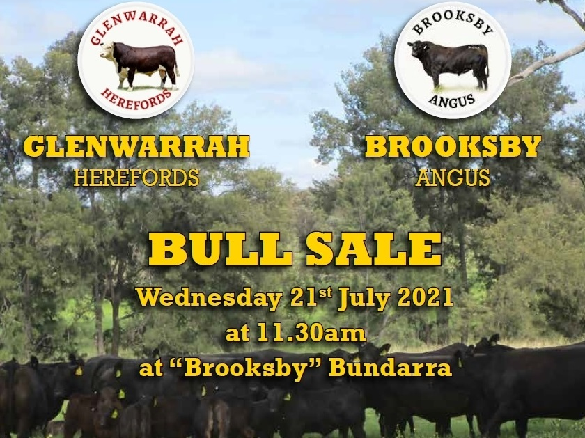 Glenwarrah Hereford and Brooksby Angus on property sale